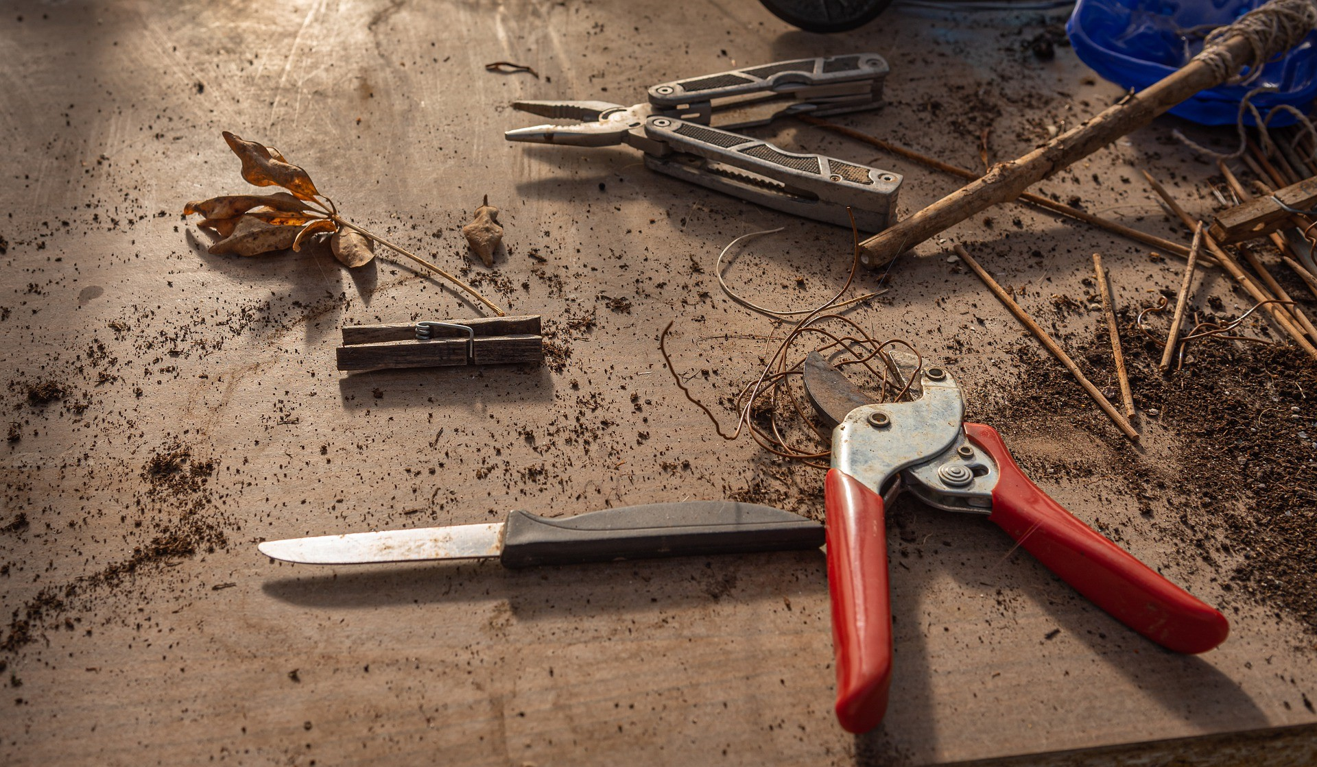 17 Types of the Commonly Used Gardening and Pruning Shears in 2021