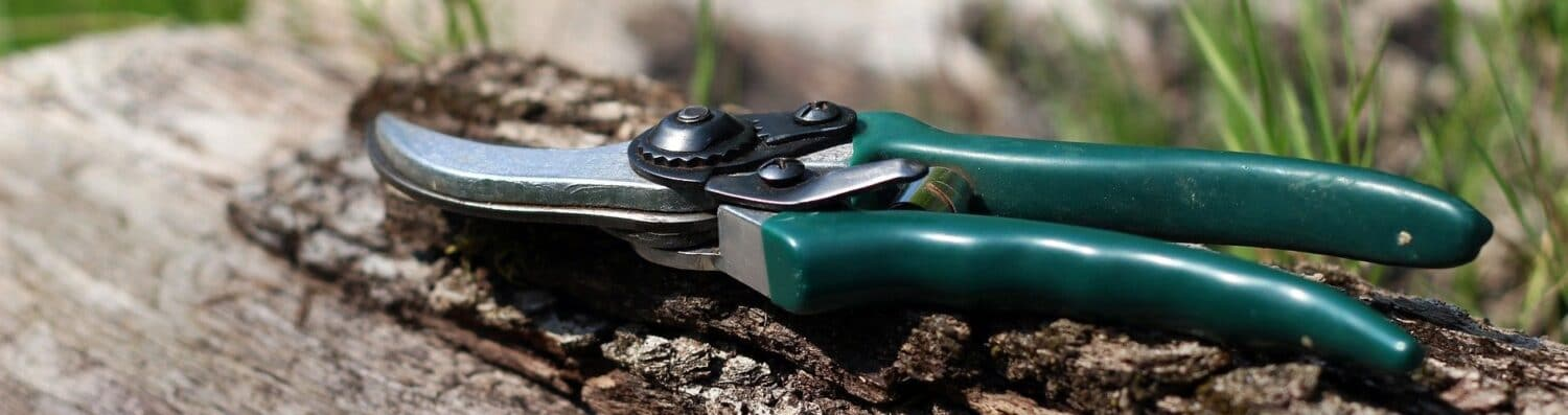 How to Sharpen Garden Shears, Clippers, And Pruners Using A Dremel: A Step By Step Guide