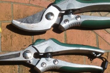 Corded vs. Cordless Grass Shears, What's the Difference?