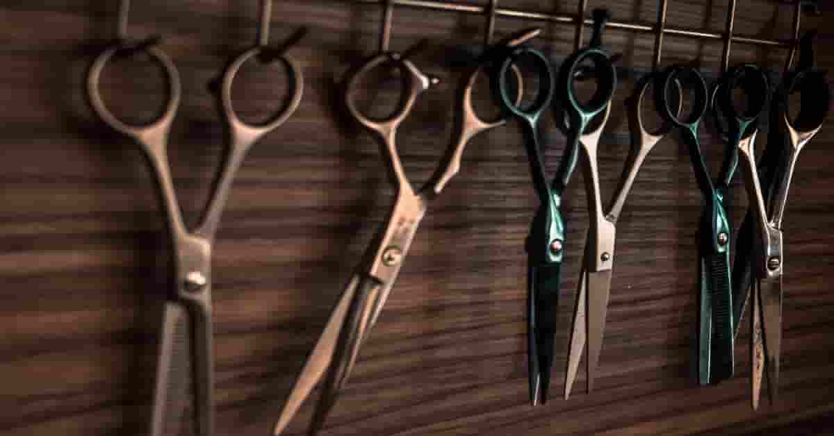 Top 10 Tips on How to Maintain and Take Care of Kitchen Shears